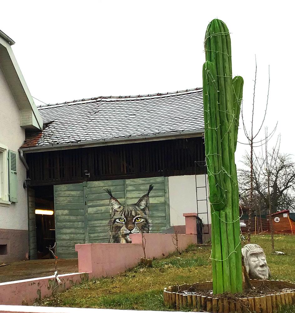 Cactus Studio